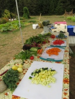 Preparing for classes involves getting lots of delcious garden veggies ready!