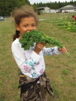 Big kale leaves are particularly popular.