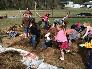first grade loading up hay to mulch_3411