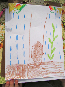 First grade potato drawing_7417