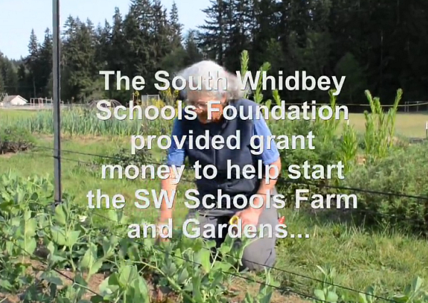 School Foundation video 2015a