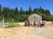 Greenhouse moved from the Elementary School by UW Farm students