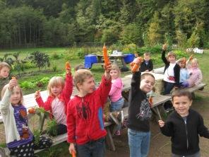 carrots_0858