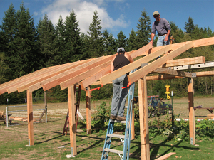 harvest shed putting up rafters1_0474