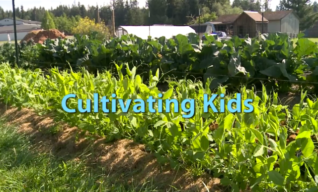 Cultivating Kids title