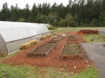 Kindergarten garden at the school farm spiffed up!