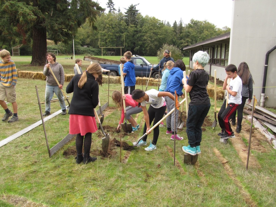 Digging in the grass in the new beds at the Middle School